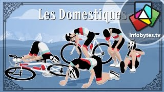 The Tour De France Explained in Animation thumbnail