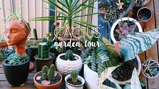 Plant Tour! Welcome to my Succulent & Cacti Garden :) | Natasha Rose