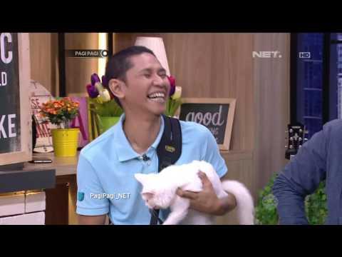 Breeder Kucing Sukses Beternak Kucing Ras