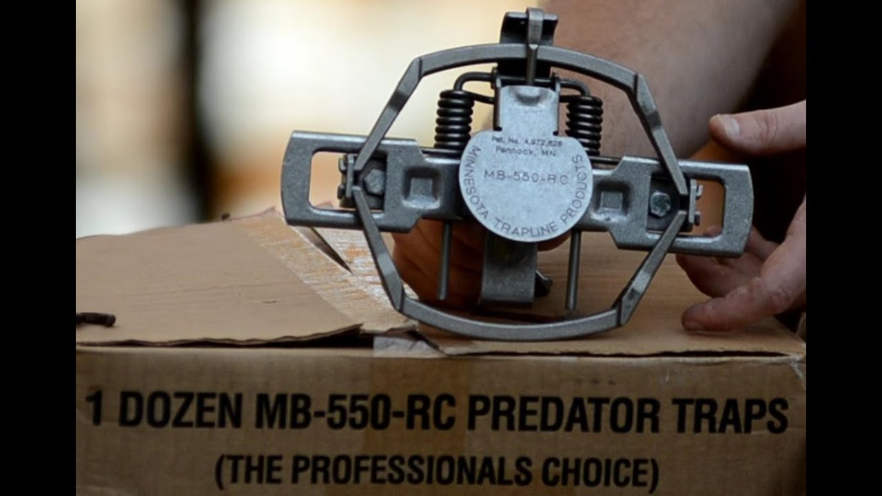 Download Best Predator/Coyote Trap - MB 550 Trap Review