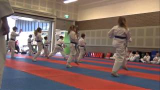 KARATE Kids Class (ages 8-12)