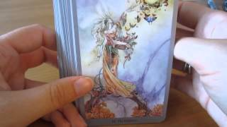Shadowscapes Tarot Review