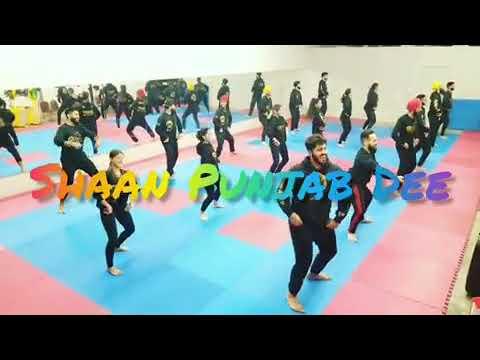 Shaan Punjab Dee (ਸ਼ਾਨ ਪੰਜਾਬ ਦੀ ) | Nirvair Pannu | Pistol song