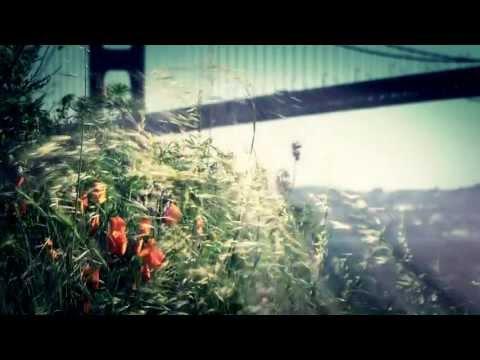 Alpha Ambient - Ocean to Ocean (VJ Film for live show)
