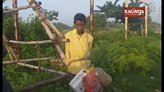 Thief Tied-up And Paraded On Streets By Irate Locals In Odishaand39s Mayurbhanj  Kalinga Tv