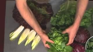 Warenkunde: Salat