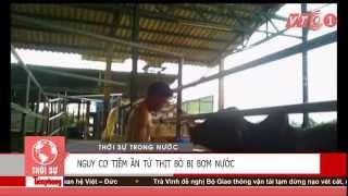 TRÂU BÒ BỊ BƠM NƯỚC BẢN TIN 20H VTC1