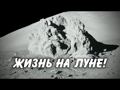 This is what the astronaut on the moon could find! Every person on Earth must find out!