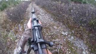 Newfoundland gopro moose hunt (open sights)