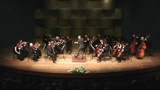 Nasidze Symphony 3, Chamber Symphony