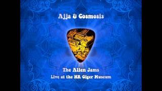 ajja and cosmosis  - marimbad