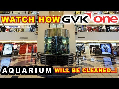 Do You Know How GVK One Mall Aquarium Will Be Cleaned? Watch Here!