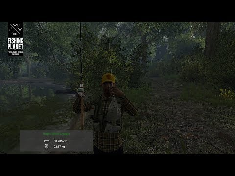 Neherrin River All Fish Species And Fishing Spots Part #2 - Fishing Planet Europe