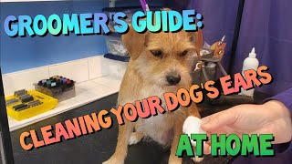 Groomer's Guide to Ear Cleaning
