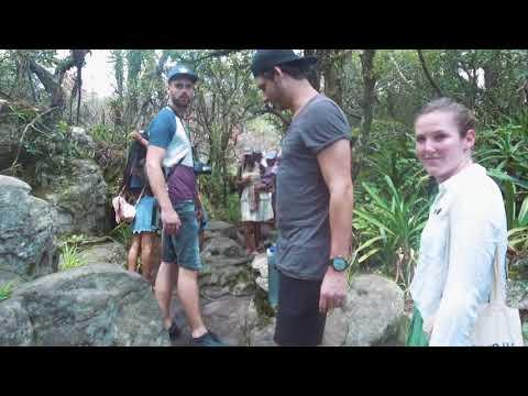 Video Rondreis Zuid-Afrika