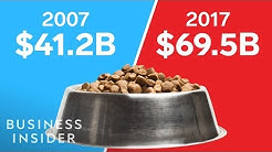 Why Expensive Dog Food Is A Ripoff
