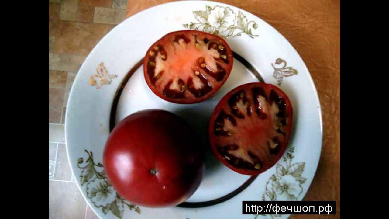 Заказать семена почтой или купить семена в интернет магазине в украине вы. Интернет-магазин «сеньор помидор» создан для тех, кто занимается.