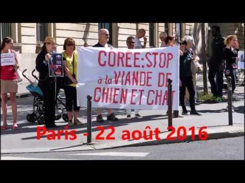 Manifestation à Paris contre la viande de chien en Corée