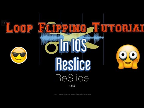 flipping loops in Reslice