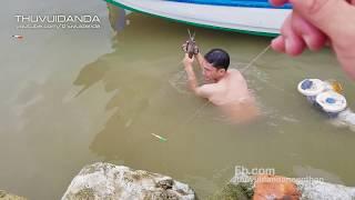Kịch Tính khi Săn  2 Loại Cá Có Độc ở Đất Mũi Cà Mau l Wild Fish Hunter