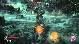 Lords of the Fallen PS4 - Worshiper Boss w/ Priest