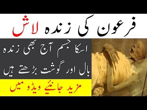 Firon Ki Lash / Firon Dead Body | Maulana Tariq Jameel bayan