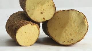 Jamaican Yellow Yam: Selecting it, Peeling it, Eating it | Simone, the Curvy Cook