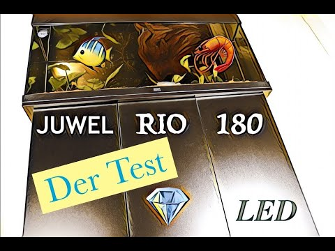 JUWEL RIO 180 LED | Der Test |  Unboxing and Setup 🐠 🦐