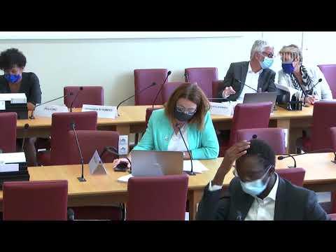 Commission des affaires étrangères : Restitution de biens culturels aux Bénin et Sénégal