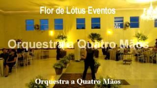 Baixar 05 Fico assim sem voce cant Carol   Flor de Lotus 1 0S0L0O