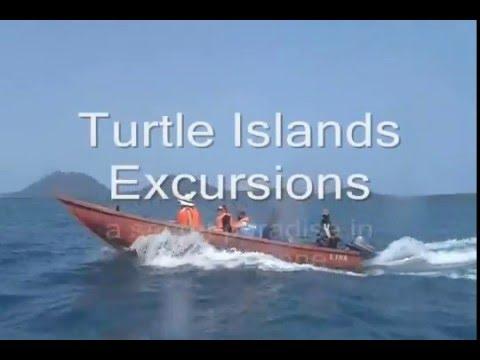 Turtle Islands Sierra Leone