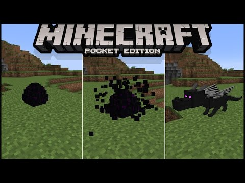 How to Hatch Ender Dragon Egg in Minecraft pe 1.0   how to summon ender dragon in minecraft pe