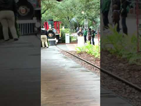 Jacksonville Zoo General Train Arriving at Main Camp Station 12/9/2017