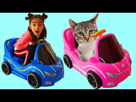 Esma and Cute Cat plays with toy car
