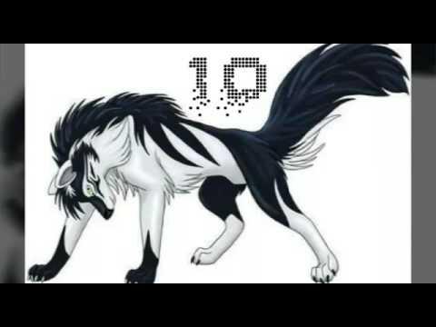 top 10 des loups manga les plus beau youtube. Black Bedroom Furniture Sets. Home Design Ideas