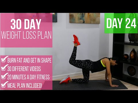 30-day-weight-loss-program-day-24-|-under-20-minutes-per-day-|-burn-fat-get-in-shape-|-fitnessbynena