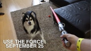 Use the Force - VLOG - September 25 Thumbnail