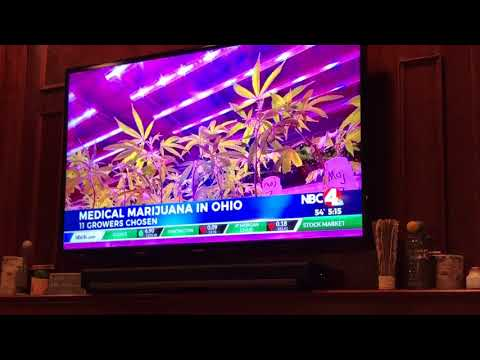 Marijuana News Clip