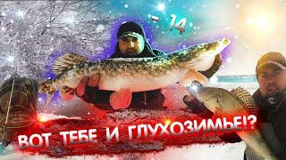 Рыбалка в ГЛУХОЗИМЬЕ на Москва реке. Ловля щуки и судака на спиннинг в феврале. Зимний спиннинг 2021