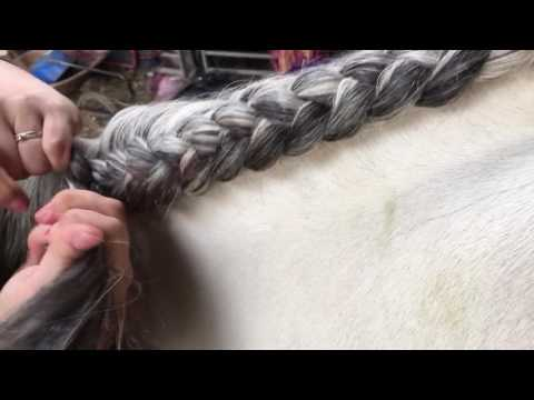 How To Crest Plait (under)