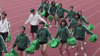 Publication Date: 2018-12-03 | Video Title: 陸運會2018-2019啦啦隊比賽-碧海社
