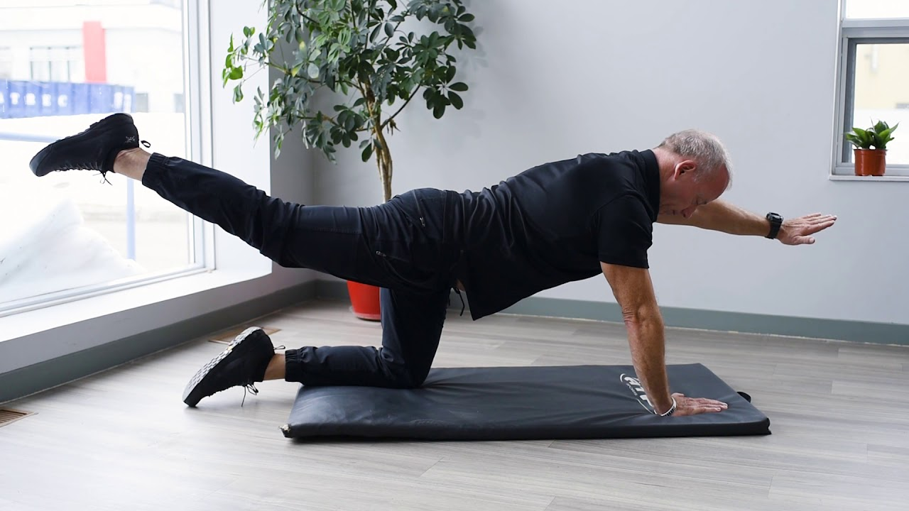 Le quadrupède - Exercice de gainage abdominal - YouTube