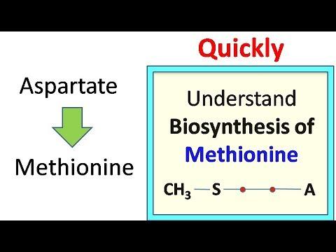 Methionine biosynthesis