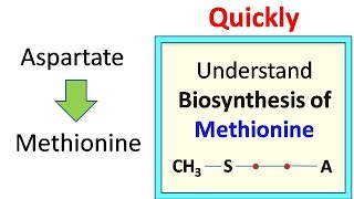 Methionine biosynthesis