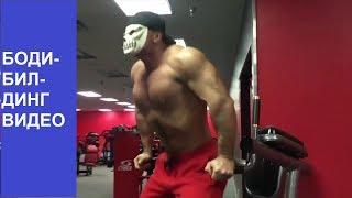 Бодибилдинг видео. Базовые упражнения для грудных мышц