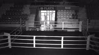 """Всероссийское соревнование по боксу класса """"А"""" памяти мастера спорта России Тимура Габдуллина день 3"""