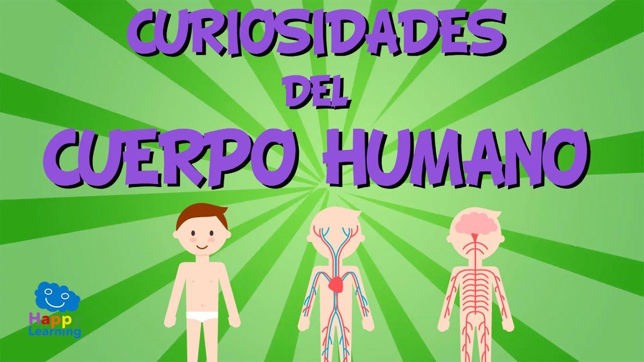 Curiosidades del Cuerpo Humano | Videos Educativos para Niños. - YouTube