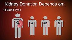 hqdefault - Kidney Transplant Criteria Uk