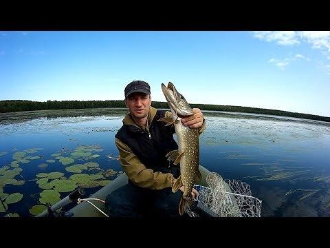 Рыбалка на самом красивом озере во Владимирской области