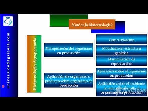 Qué Es La Biotecnología